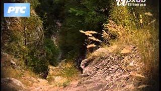 Staro srpsko pisano nasleđe: Radoslavljevo jevanđelje