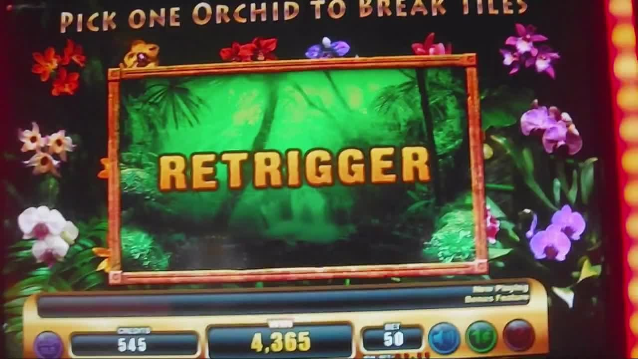 Slot machine jungla