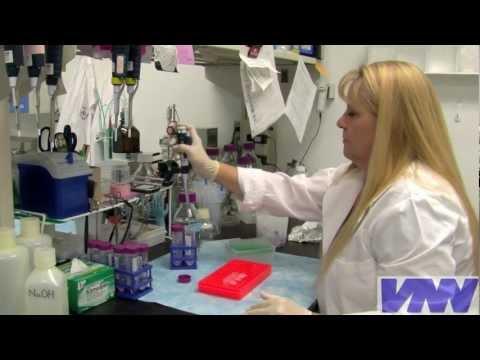 How Do You Become a Veterinarian?