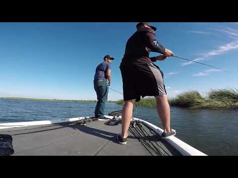 Fishing Slow Out Of Whiskey Slough Stockton Delta