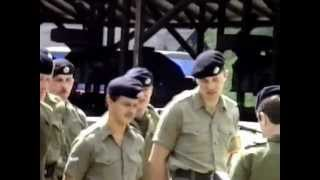16 tank transporter sqn rct rlc fallingbostel scammell commander baor 1987 1