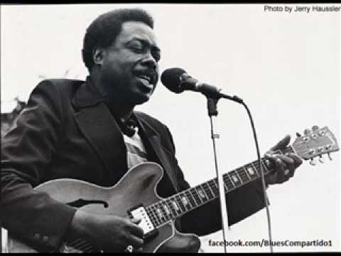 Jimmy Rogers - Chicago Blues Festival,  Petrillo Bandshell,  Grant Park,  Chicago. 1994