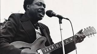 Jimmy Rogers - Chicago Blues Festival,  Petrillo Bandshell,  Grant Park,  Chicago. 1994