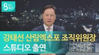 [G1뉴스] 강태선 산림엑스포 조직위원장 스튜디오 출연 이미지