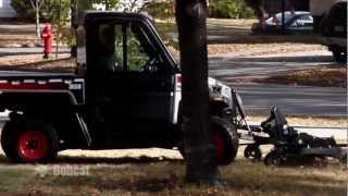 Bobcat 3600/3650 Utility Vehicles: Durability & Performance