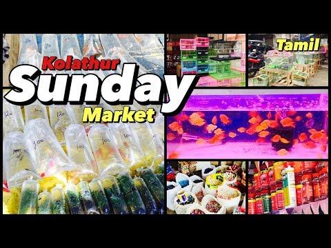 Kolathur Sunday Market- You Can Buy The Fishes On Unbelievable Rates