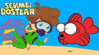 Kırmızı Balık ve Sevimli Dostlar ile 75Dk Çizgi Film Çocuk Şarkıları | Kids Songs and Nursery Rhymes