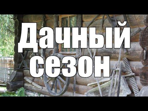 Рассказ ДАЧНЫЙ СЕЗОН  Дед Архимед