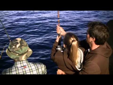 Squid fishing in newport beach youtube for Newport landing fish report