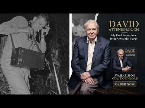 David Attenborough: My Field Recordings from Across the Planet