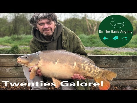 Day Ticket Carp Fishing - Stafford Moor Lodge Lake
