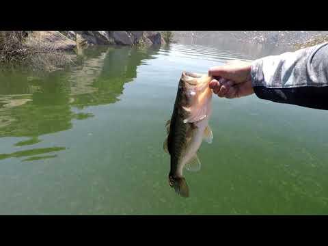 Fishing San Vicente Reservoir San Diego, CA