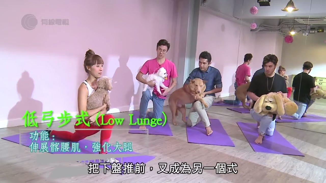 $1800/小時私人寵物瑜伽班 (Doga)富人玩意 李尚正帶 70 磅大唐狗上堂 -《Learning男》(2017) EP4-2 - 香港進修課程 - YouTube