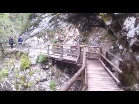 Slovenia tourism - Bled, Vintgar gorge and waterfalls