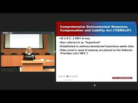Environmental Issues in Commercial Property Transactions