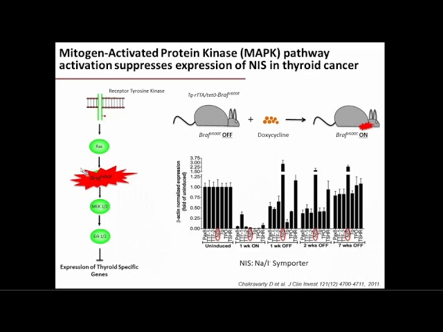 Mechanism-based Therapies for Advanced Thyroid Cancers