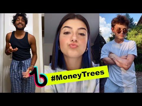 MONEY TREES Tik Tok Version - Kendrick Lamar (TIKTOK COMPILATIONS)