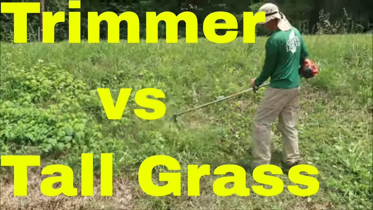 Best String Trimmer 2020.How To Cut Tall Grass With A String Trimmer Aka Weedeater Weed Wacker