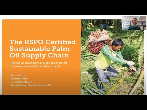 Pathways in Business and the Environment: Roundtable on Sustainable Palm Oil