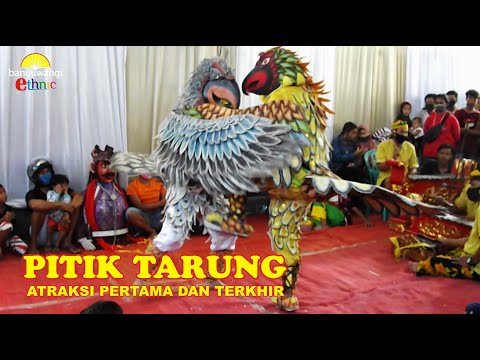 TARI BURUNG GARUDA - JARANAN ARJUNA SAKTI LIVE PASINAN BANYUWANGI 27-09-2020
