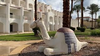 Полныи обзор отеля Siva Sharm Египет 2021 АРИНА БЕЛАЯ