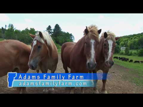 Adams Family Farm, Wilmington VT - Visitors Guide to Southern Vermont