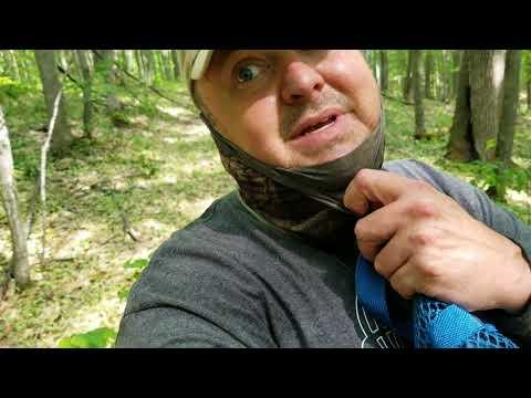 Otsego County Gaylord Michigan Morel Mushroom Update 5-30-18