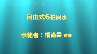 沉浸游泳immersion『自由式6拍踢水』