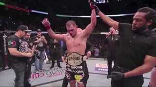 """""""Can't Cage This Animal"""" - Highlights of MMA, K1 & UFC: Knockouts, Submissions & Walkouts"""