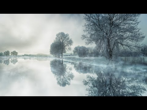 Sleep Meditation Music: Reiki Sleep Meditation, Chakra Healing Meditation Music