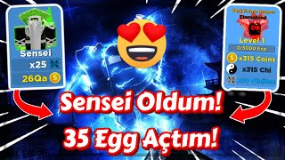 Sensei Oldum, 35 Egg Açtım! / Roblox Ninja Legends