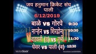 जय हनुमान क्रिकेट संघ  ( पाली ) २०१९