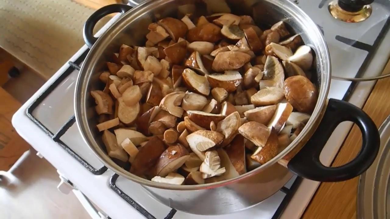 Как варить червивые белые грыбы (рецепт)