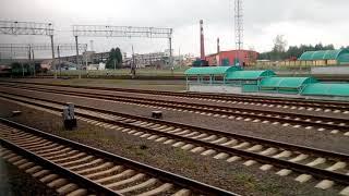 Беларусь   с окна поезда Гомель Брест