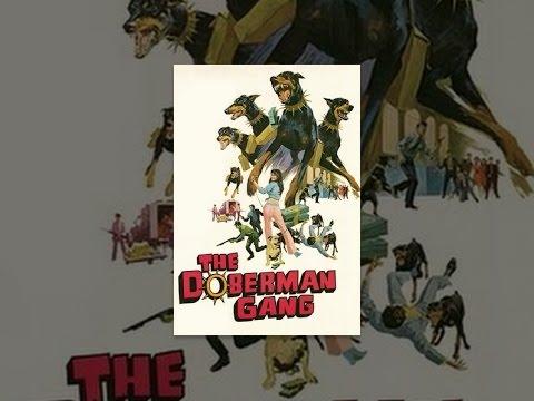 The Doberman Gang (1972) - YouTube