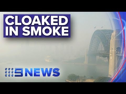 This Is What Sydney Harbour Looks Like Right Now | Nine News Australia