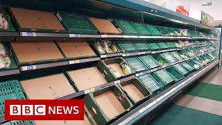 Is Brexit causing food and medicine supply problems in the UK? - BBC News