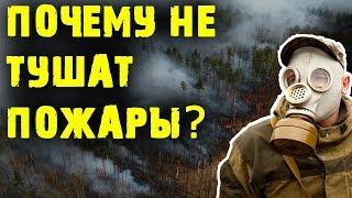 Почему не тушат лесные пожары в Сибири? | Жизнь в России