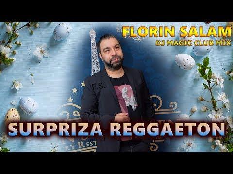 Florin Salam - Surpriza Reggaeton cu Percutia beton (Original Mix)