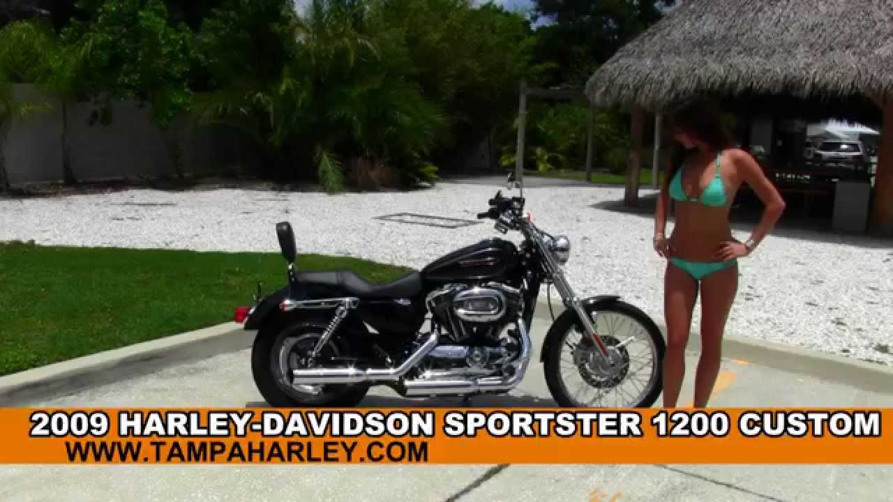 Vrod For Sale >> Used 2009 Harley-Davidson Sportster 1200 Custom for sale - Low Miles! - YouTube