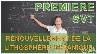 Renouvellement de la lithosphère océanique : dorsale et fusion - SVT - 1ère S - Les Bons Profs thumbnail