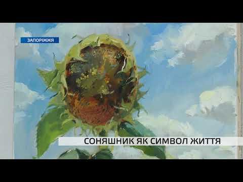 Телеканал TV5: Запорізька художниця розповіла про філософію соняшника у житті