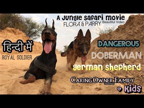 The Doberman German Shepherd Dangerous but Caring Owner Kids. Adventure in Jungle. By Royal Soldier
