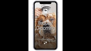 PetExec Mobile app: How to Request a Grooming