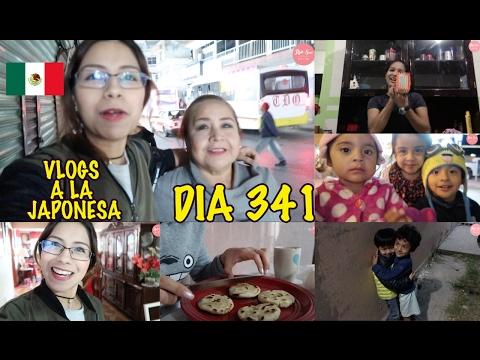 Ingenio Mexicano + Caminata hacia al Parque JAPON - Ruthi San ♡ 30-01-17