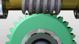 Worm Gear Speed Reducer