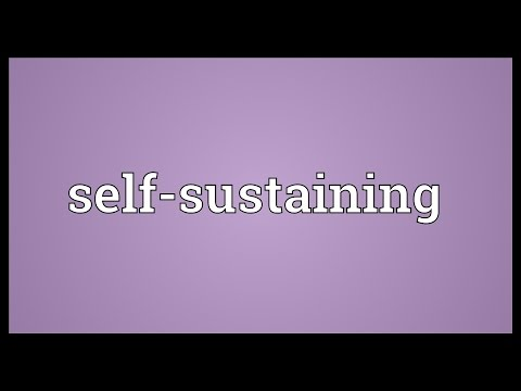 Self-sustaining Meaning