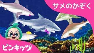 リアルなサメのかぞく | どうぶつのうた | ピンキッツ童謡
