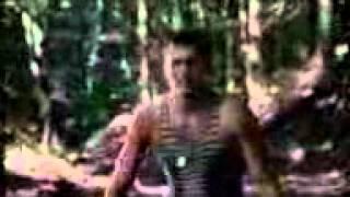 Клип Петлюра-Солдат.