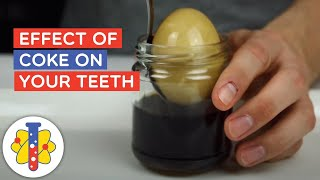 The Effect Coke Can Have on Your Teeth with the Example of an Egg